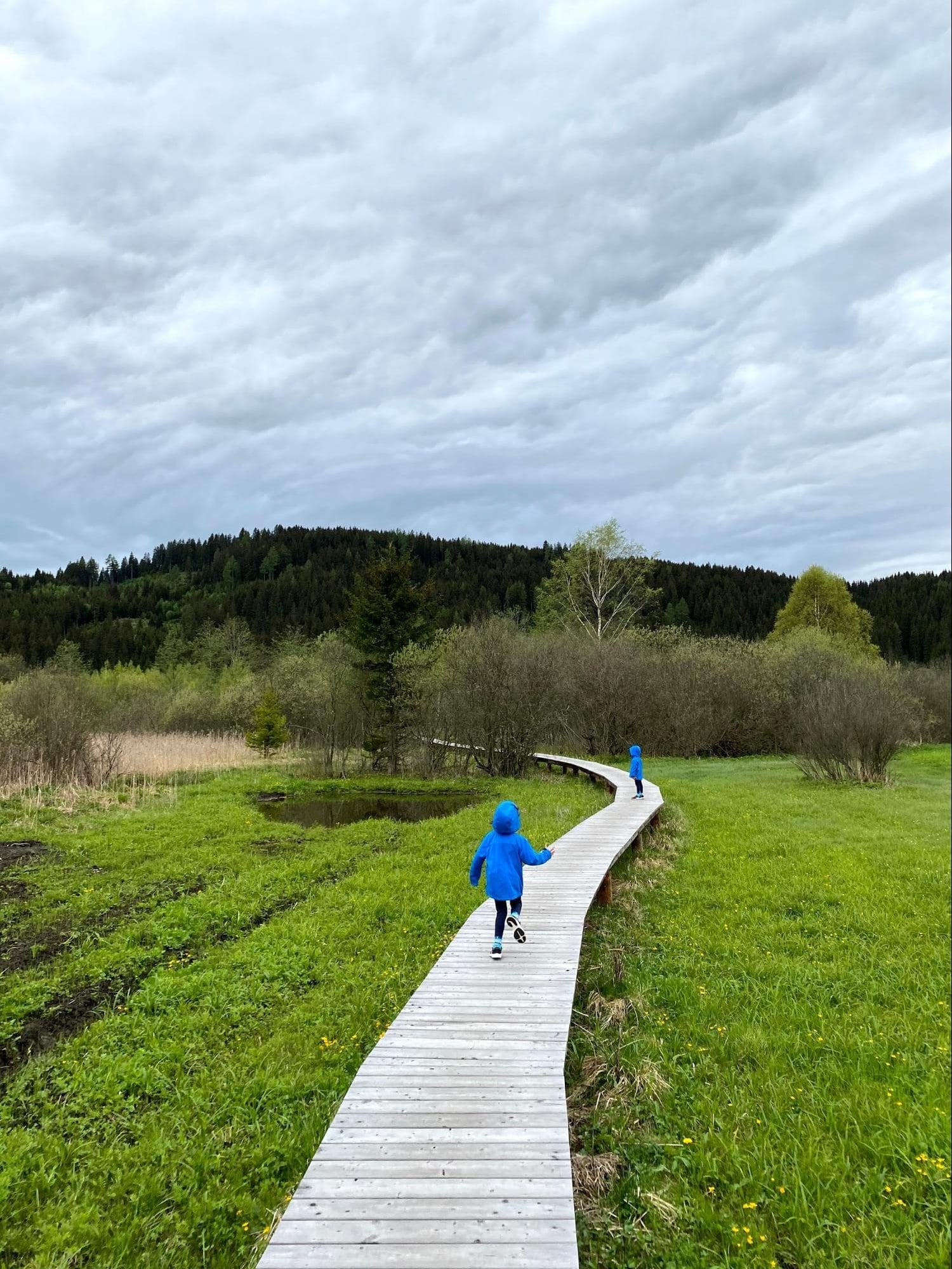 """Saturday Kids """"Travels"""": Learning through Living in Austria"""