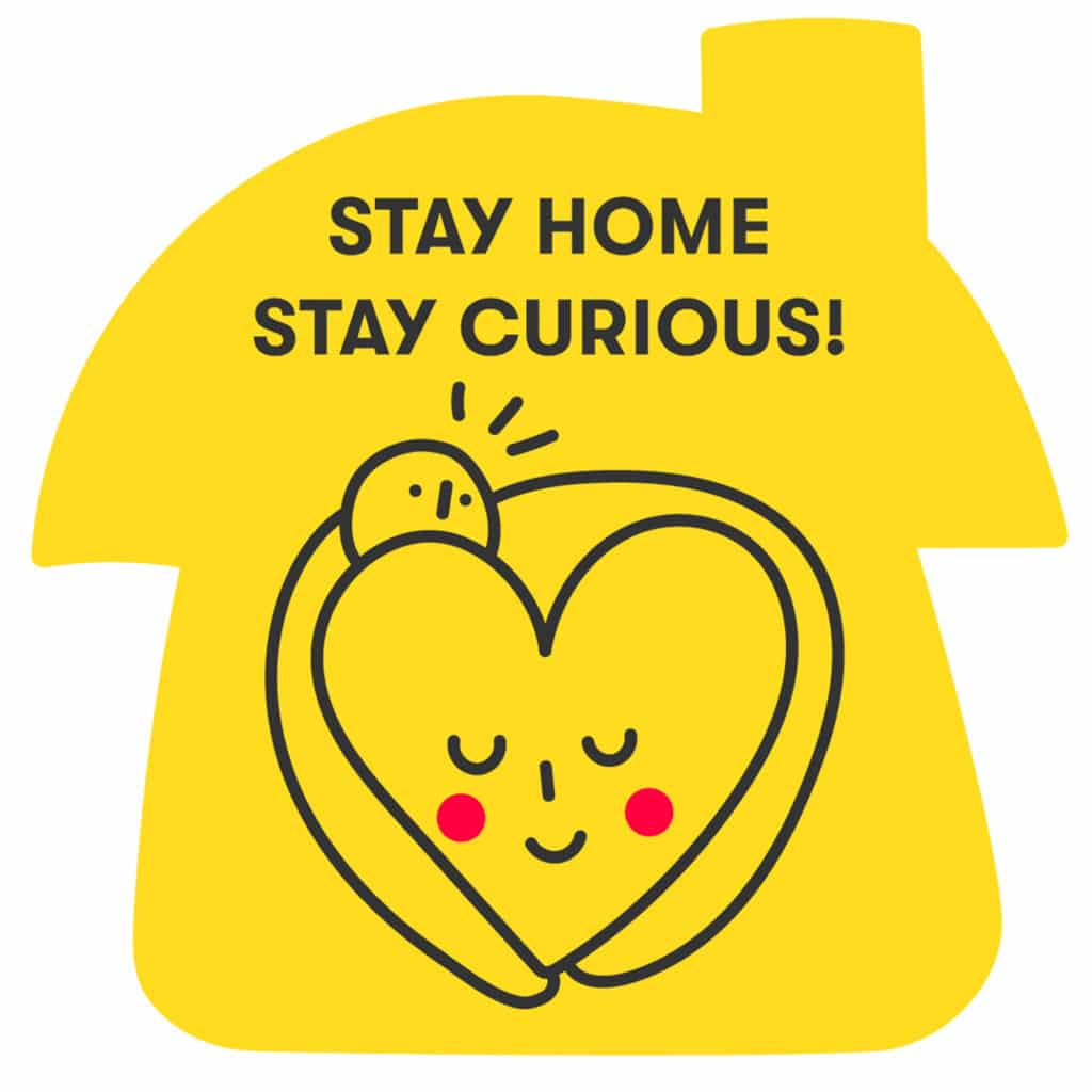stay home stay curious